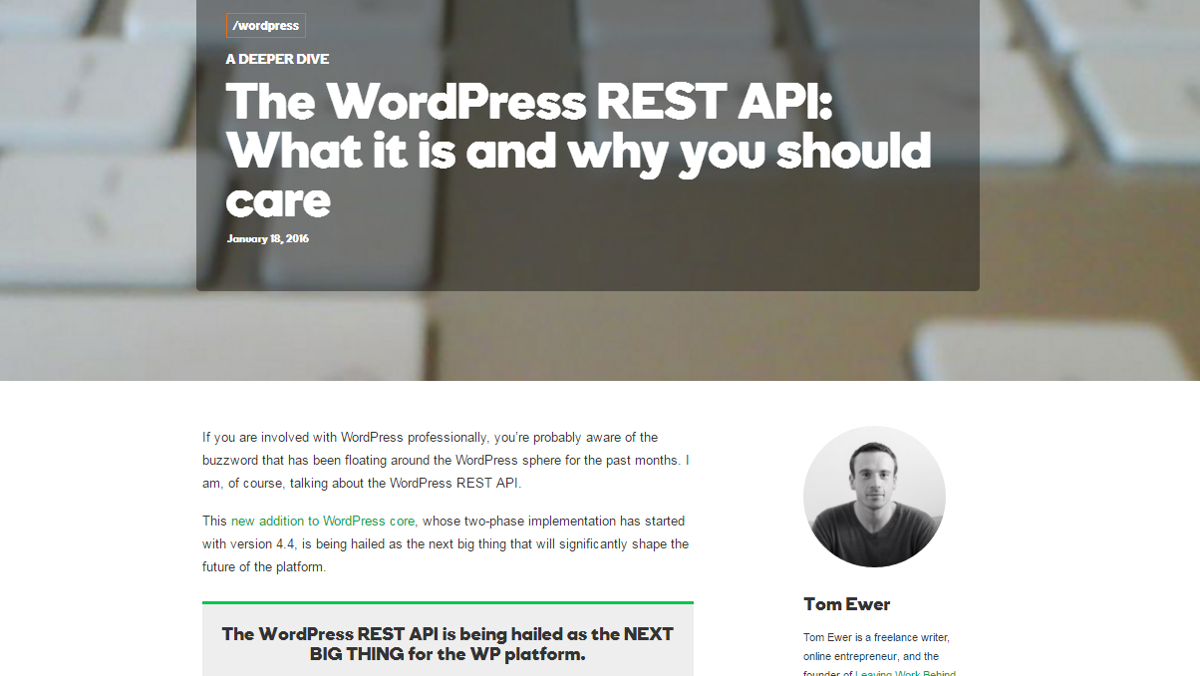 Blog post about the WordPress API