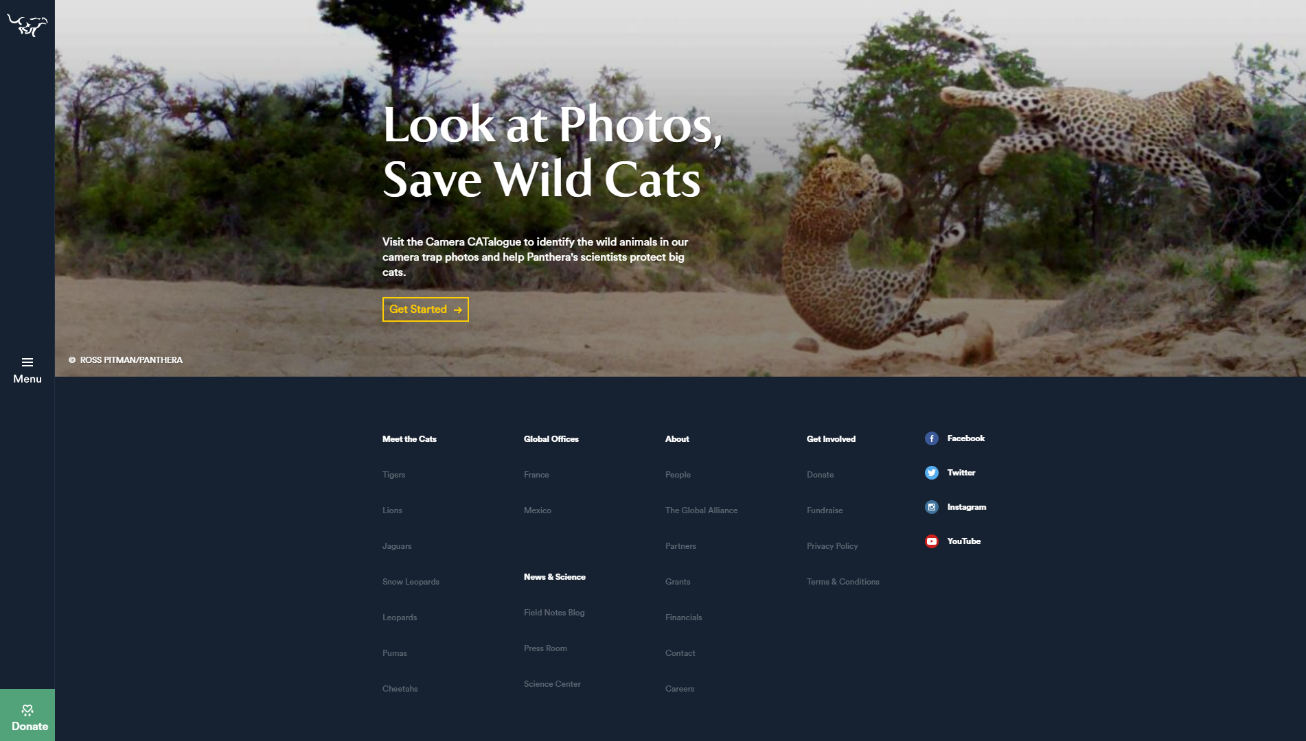 The Panthera homepage.